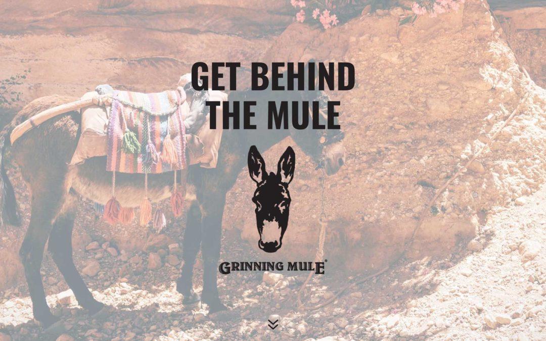 Grinning Mule